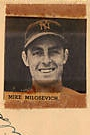 Portrait of Mike Milosevich