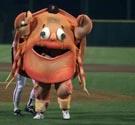 San Francisco's Crazy Crab